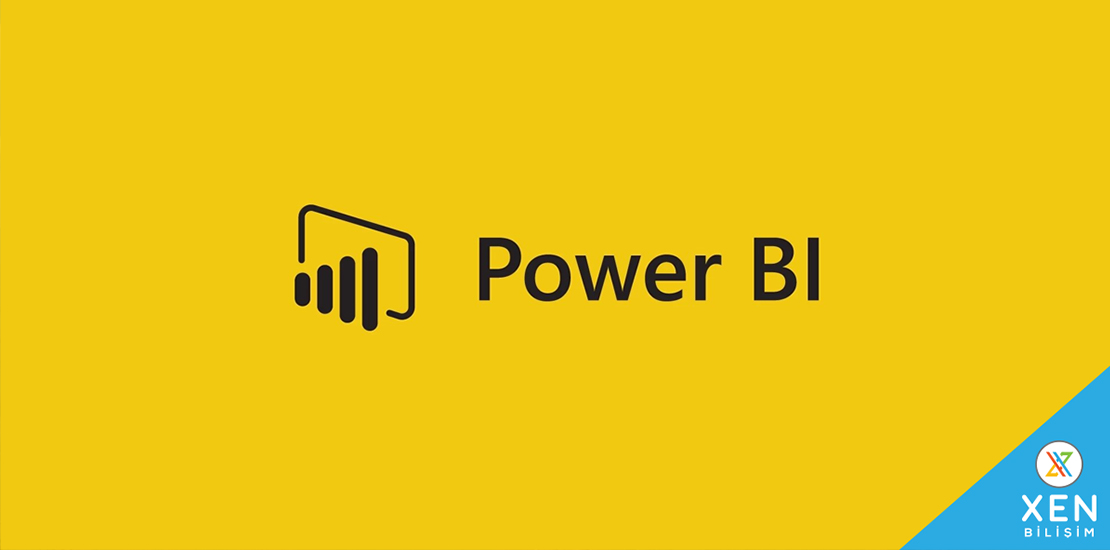 Erp Raporlama Power Bi